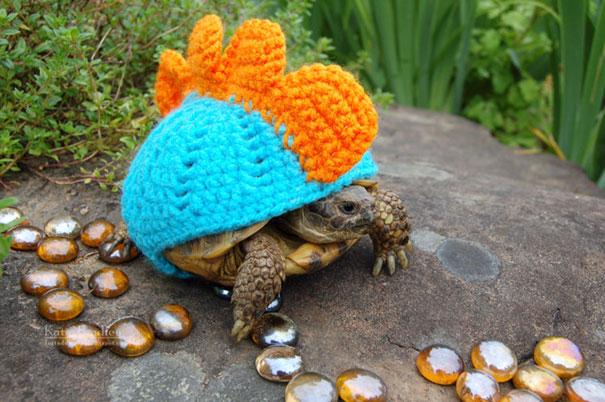 La tortuga con más estilo del estanque