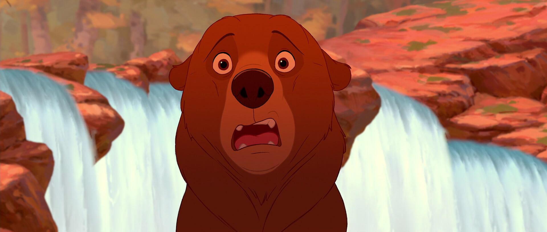 """¡Confirmado! """"Tierra de Osos"""" volverá en su versión Live Action"""
