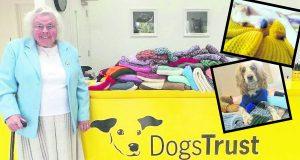 Abuelita teje y dona 450 suéteres al año para perritos de un albergue