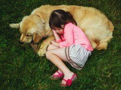 ¡Demostrado! Cuando duermen, los perros sueñan con sus amos