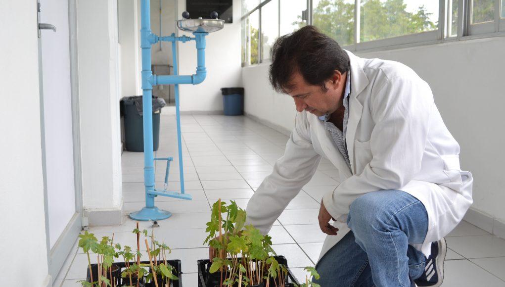 Investigadores BUAP trabajan en la eliminación de contaminantes en agua y suelo