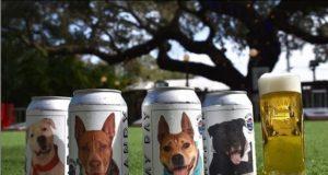 Cervecería pone fotos de perros en sus latas para encontrarles un hogar